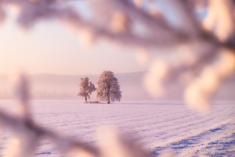 Zima na poli v Českém ráji.