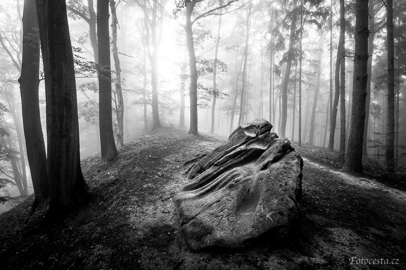 Mlha v Příhrazích.