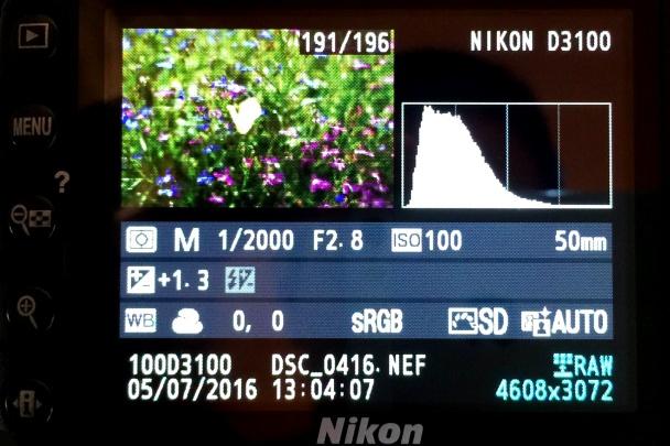 EXIF Nikon D3100.
