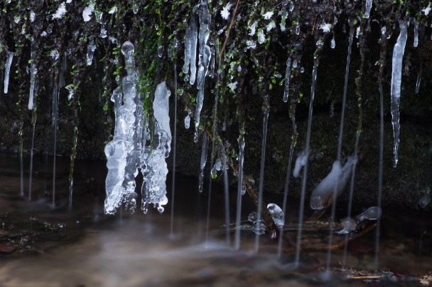 Zamrzlé detaily potoka.