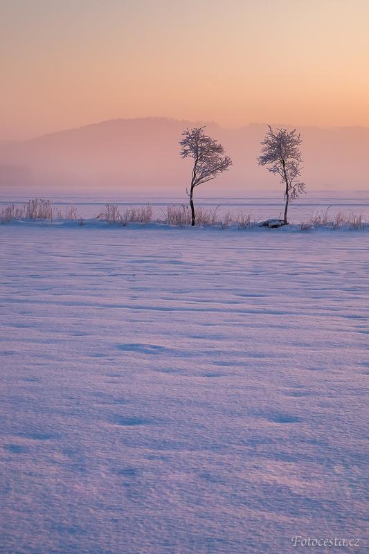 Zimní ráno na poli.
