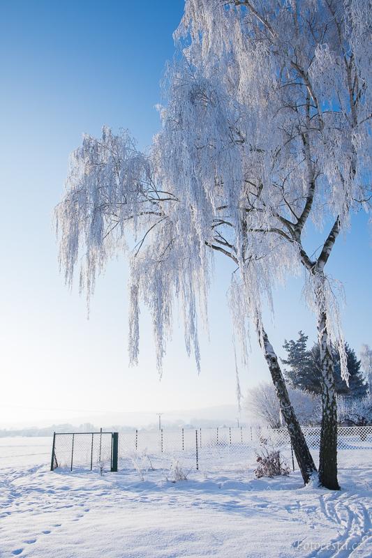 Omrzlá krajina.