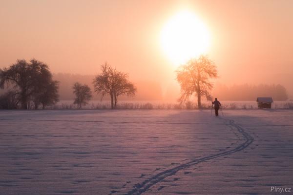 Na běžkách zimní krajinou.