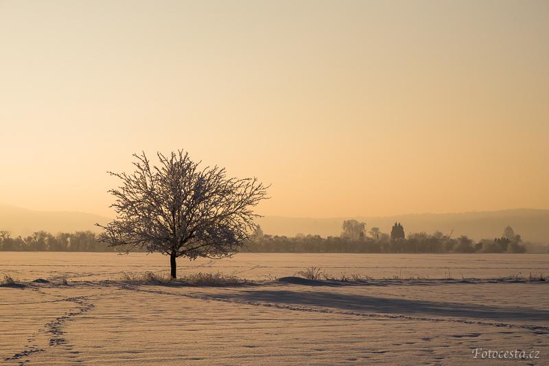 Zimní krajina.