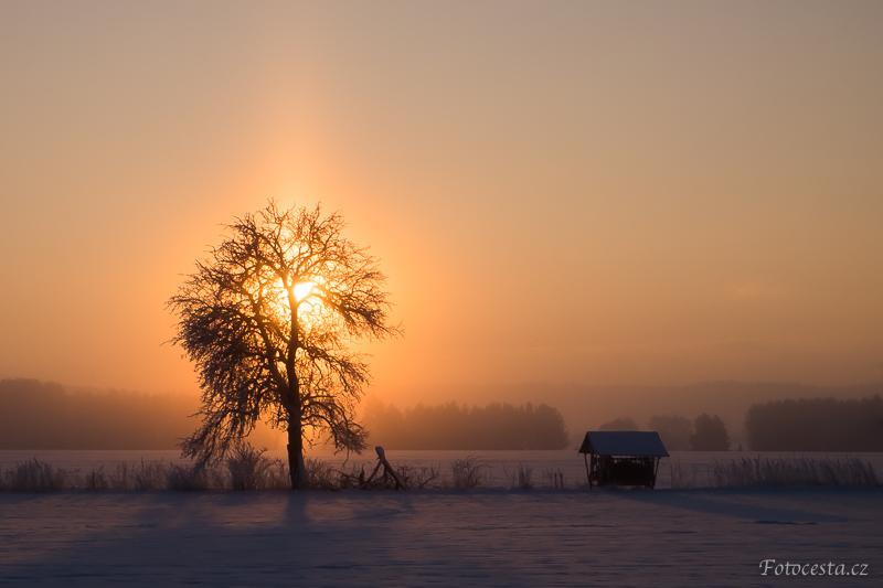 Zimní východ slunce na poli.