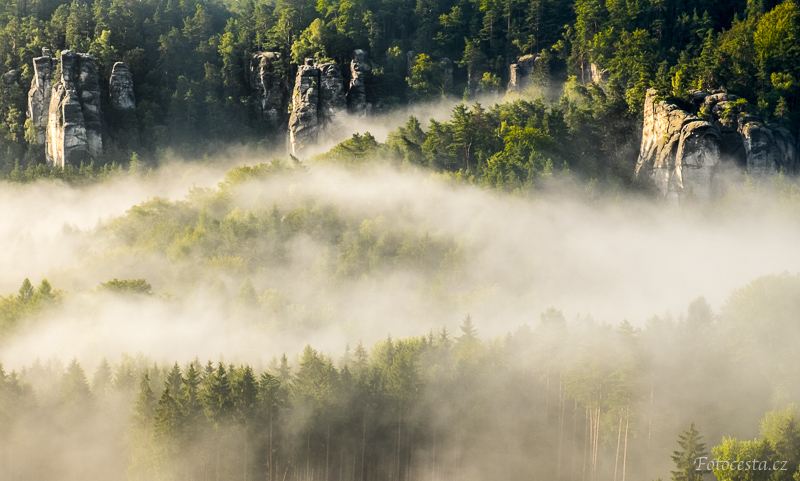 Mlha v Příhrazských skalách.