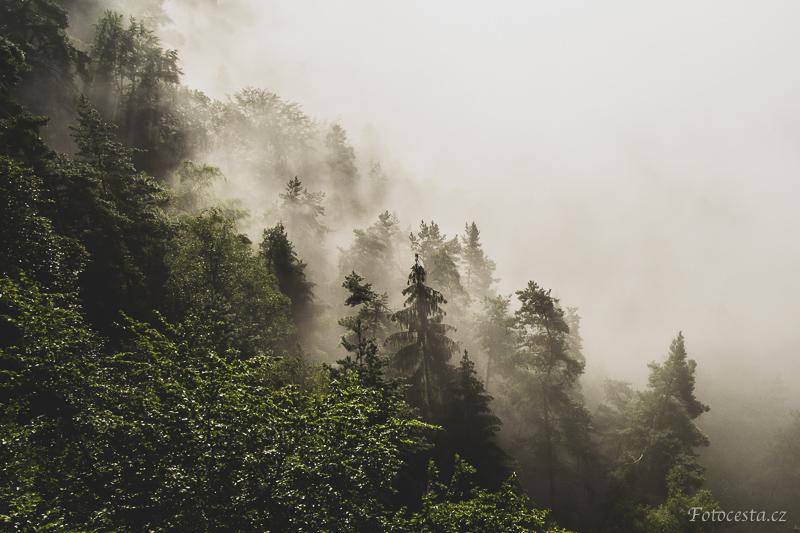 Mlha na skalách.