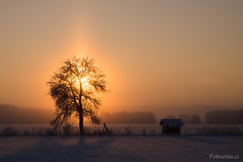 Zimní ráno na lukách.