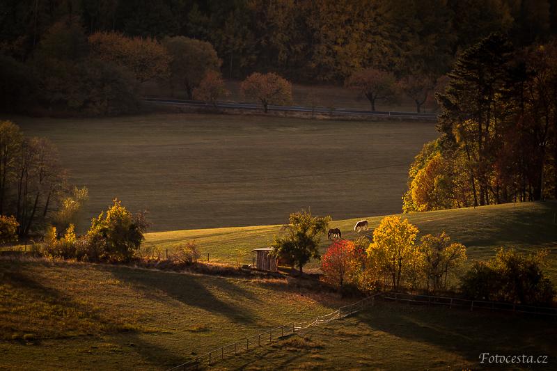 Podzimní krajina ve zlatavém světle.