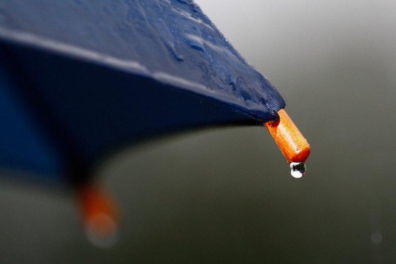 Deštník.