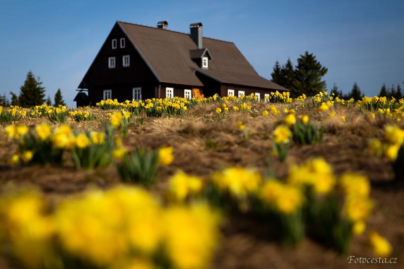 Jaro na Jizerce.
