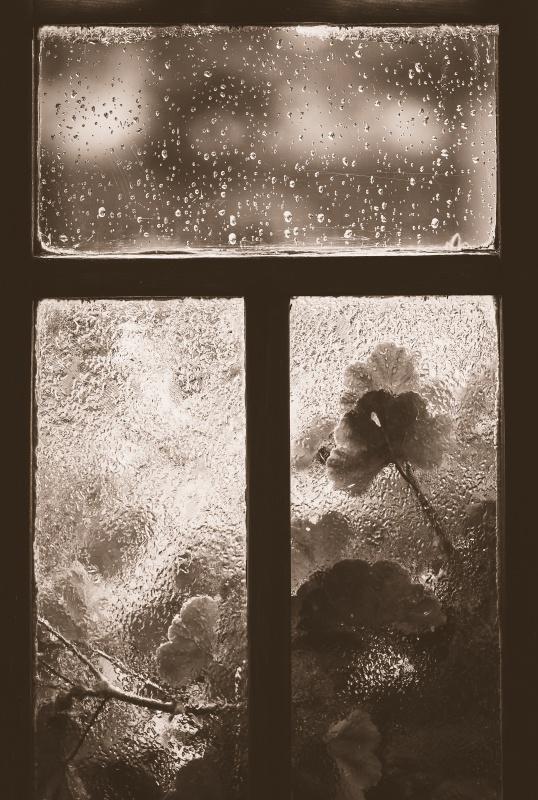 Za oknem.
